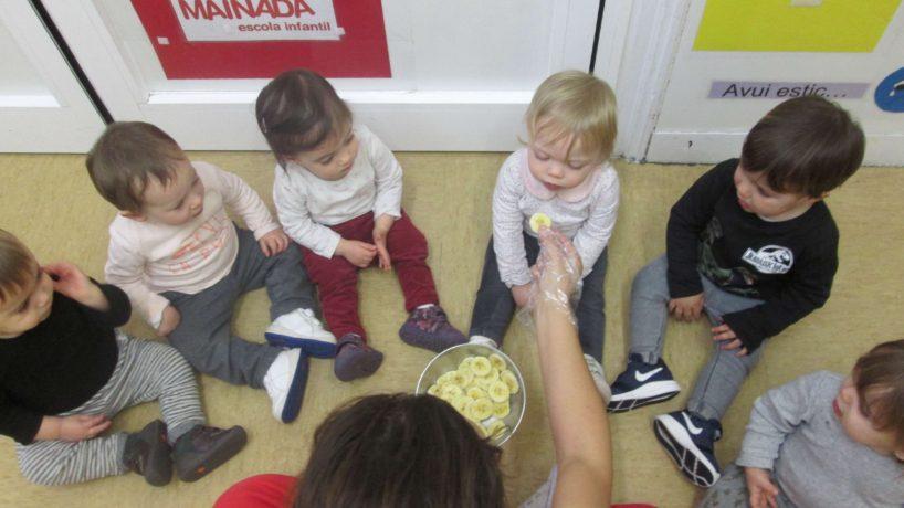 L'alimentació dels Violetes