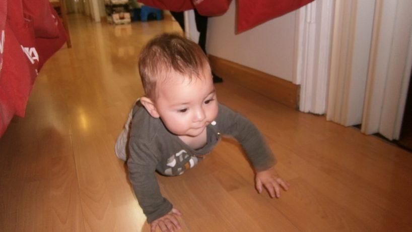 El programa físic dels nadons